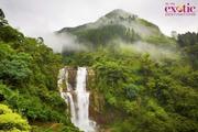 Best Sri Lanka Holiday Packages Online