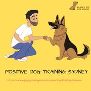 Positive Dog Training Sydney