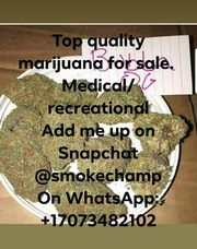 quality medicated mary J. Recreational/Medicated